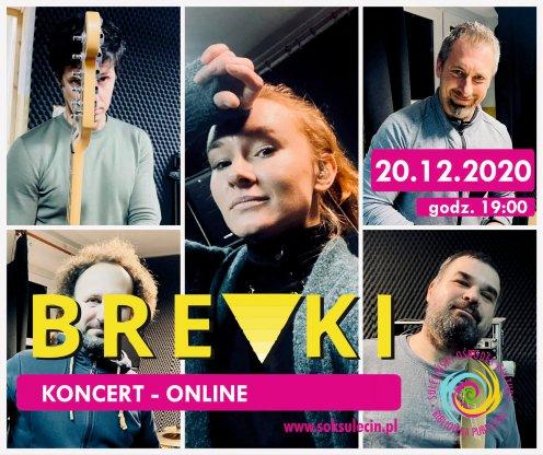 BREVKI - koncert online