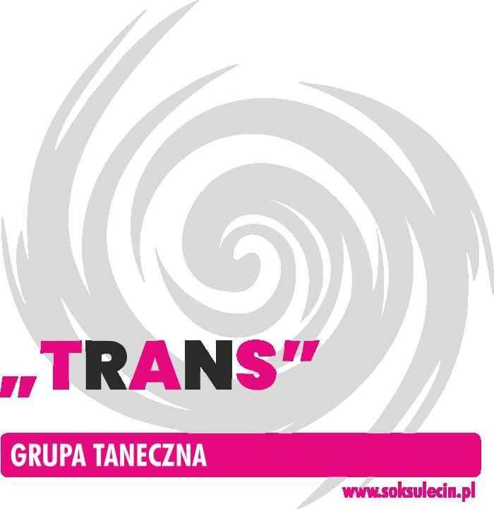 """Zajęcia taneczne grupy """"Trans"""""""